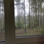 Коттедж в лесу