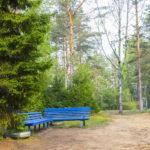 Отдых на Большом Борковом озере