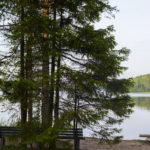 Большое Борково озеро