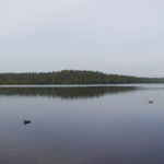 Большое Борково озеро - на берегу