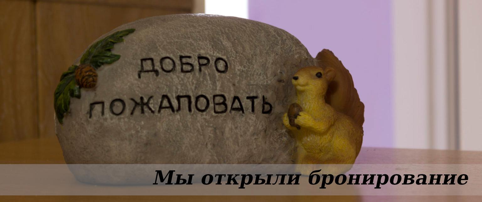 otkryli_bron
